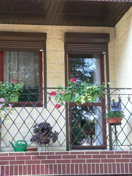 dom-jedno-rodzinny-stadgard-szczecinski-32